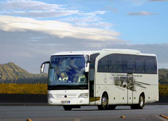 Disfruta de la Romería del Rocío viajando en autobús