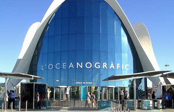 Disfruta del Oceanográfico haciendo un viaje barato en autobús a Valencia