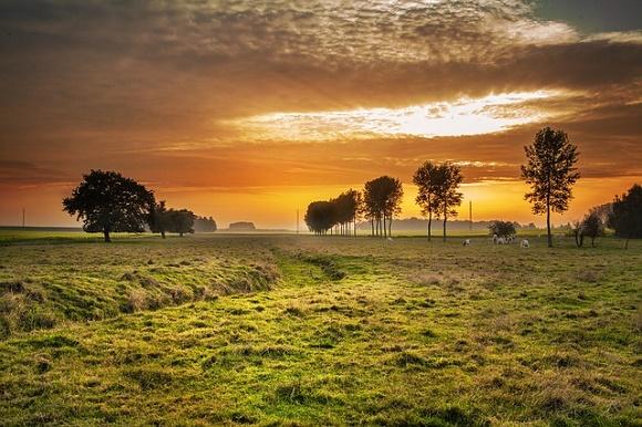 ¿Dónde y cómo viajar al nuevo destino rural que triunfa este mes de noviembre?