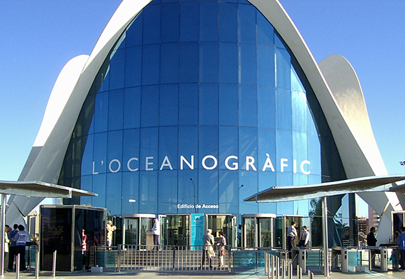 Disfruta del acuario más grande de Europa haciendo un viaje en autobús a Valencia