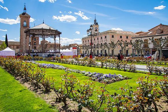 Visita en autobuses baratos Alcalá de Henares en junio 2018